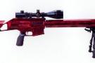 Customer gun 308 [1024x768]